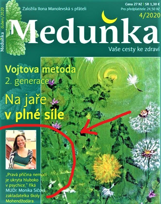 Intuice Meduňka